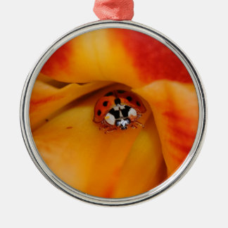 Ladybird Silver-Colored Round Ornament