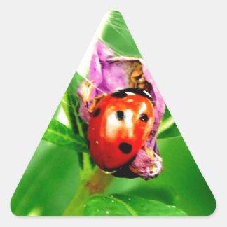 Ladybird Triangle Sticker