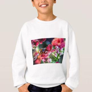 Ladybird Sweatshirt