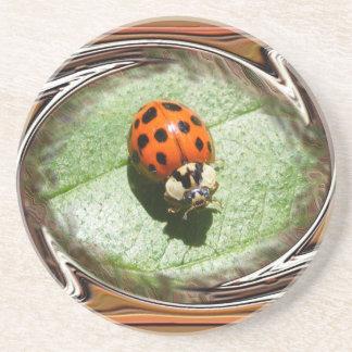 Ladybug 187 ~ coaster