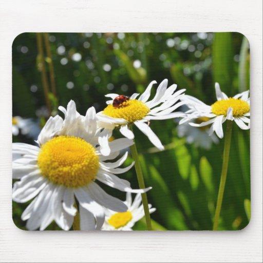 Ladybug and Daisies Mousepad