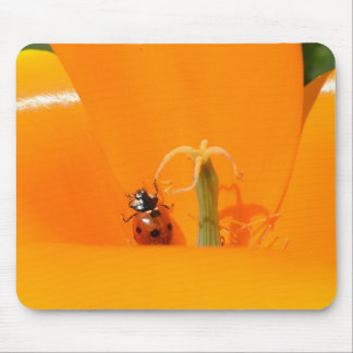 Ladybug and Poppy II Mousepad