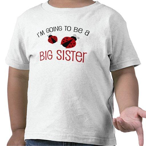 Ladybug Big Sister to Be Tee Shirts
