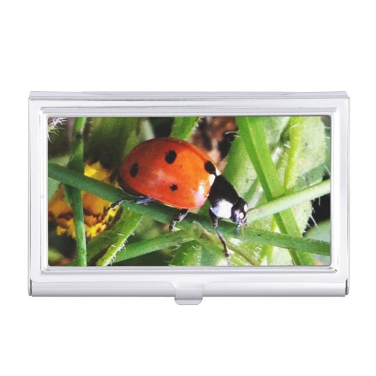 Ladybug business card holder