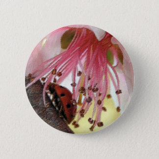 Ladybug Carwash Button