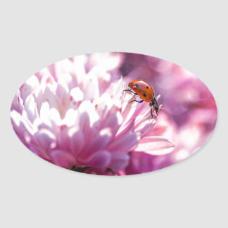 Ladybug in pink oval sticker