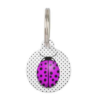 Ladybug in pink/purple pet tag