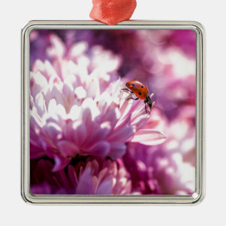Ladybug in pink Silver-Colored square ornament
