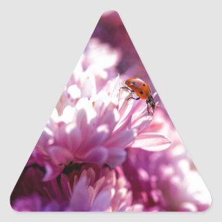 Ladybug in pink stickers