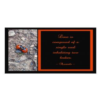 Ladybug Kisses Photo Cards