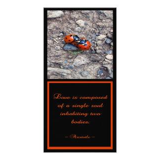 Ladybug Kisses Photo Greeting Card