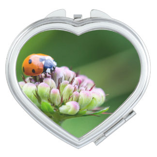 Ladybug Luck Custom Personalize Anniversaries Compact Mirrors
