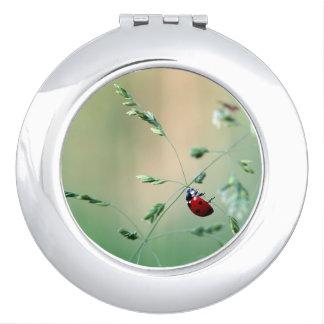 Ladybug Luck Custom Personalize Anniversaries Makeup Mirror