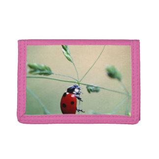 Ladybug Luck Custom Personalize Anniversaries Tri-fold Wallets