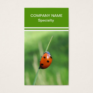Ladybug on a blade of grass business card