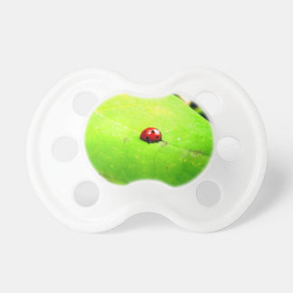 Ladybug on a Catalpa Tree Leaf Pacifier