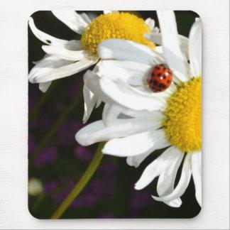 Ladybug on a Daisy Mouse Pad