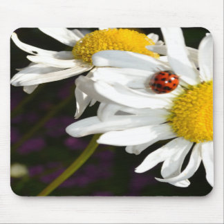 Ladybug on a Daisy Mousepad
