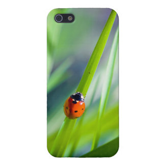 Ladybug on Leaf iPhone 5 case