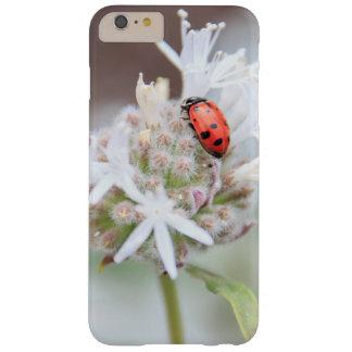 Ladybug on Silverleaf Phacelia Flowers Phone Case