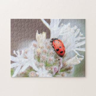 Ladybug on Silverleaf Phacelia on Mt Shasta Puzzle