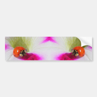 Ladybug on the petunia Bumper Sticker
