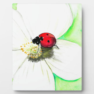 Ladybug on White Flower Plaque