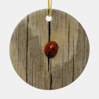 Ladybug on wood round ceramic ornament