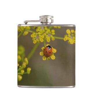 Ladybug on yellow flower hip flask