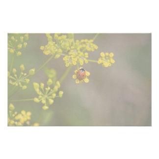 Ladybug on yellow flower personalized stationery