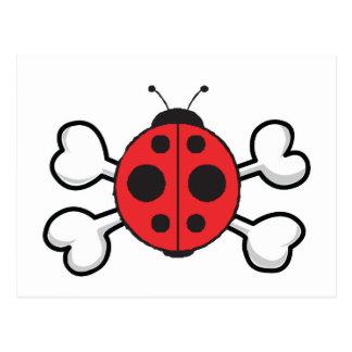 ladybug Skull and Crossbones Postcard