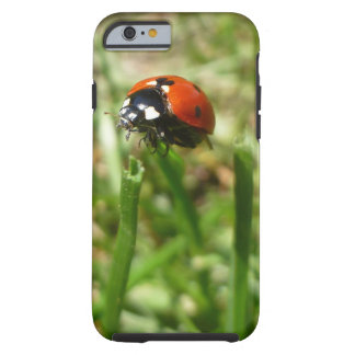 Ladybug Sturdy IPhone 6/6s Case Sturdy