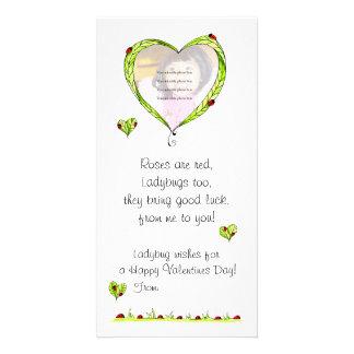 Ladybug Valentine photo card