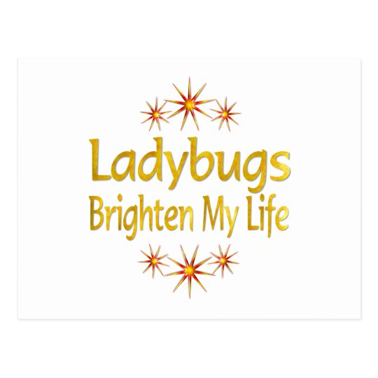 Ladybugs Brighten My Life Postcard