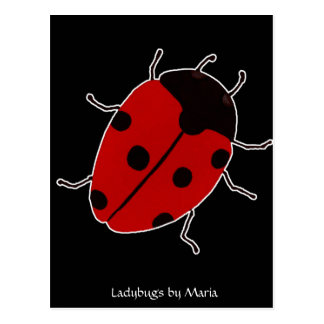 Ladybugs by Maria Postcard
