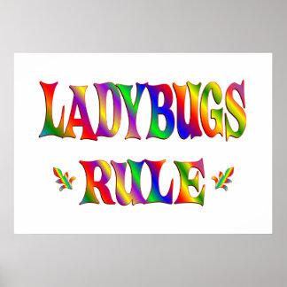 LADYBUGS RULE PRINT