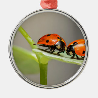 ladybugs Silver-Colored round ornament