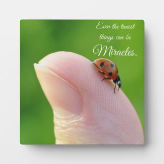 "Ladybugs ""Smallest Miracles"" Plaque Gift"