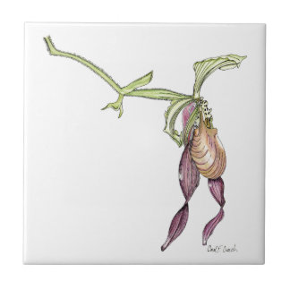 Lady's Slipper Orchid Tile