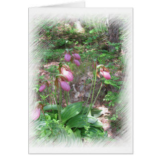 LadySlippers Card