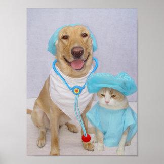 L'affiche du vétérinaire