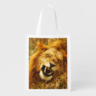 L'Afrique, Kenya, Maasai Mara. Lion masculin. Cabas Épicerie