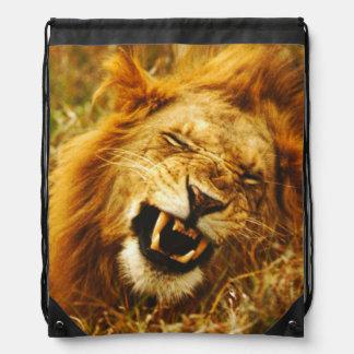 L'Afrique, Kenya, Maasai Mara. Lion masculin. Sac À Dos