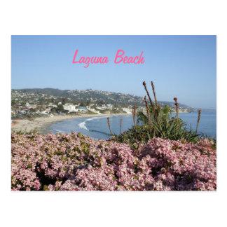 Laguna Beach flowers postcard
