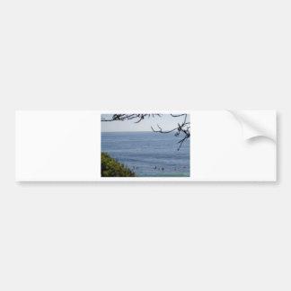 laguna beach surf bumper sticker
