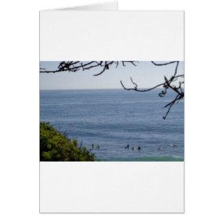 laguna beach surf card
