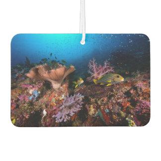 Laja Ampat Underwater Air Freshener