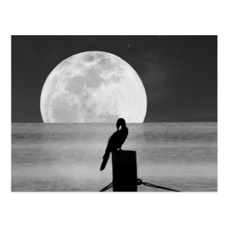 Lake Bird and Full Moon Postcard