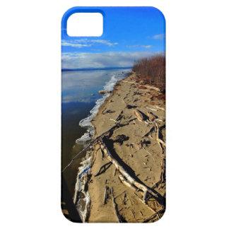 Lake Champlain Driftwood iPhone Case