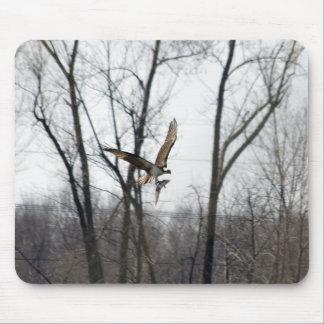 Lake Champlain Osprey Mouse Pad